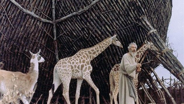 Noemova archa (ilustra�ní snímek)