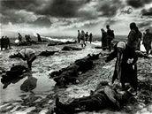 Sorrow Stricken, 1942
