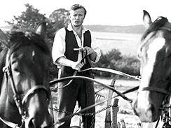 Radoslav Brzobohat�
