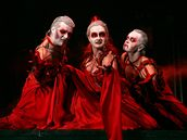 Z muzikálu Dracula