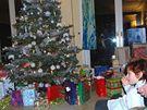 Vánoce 2009 u Dvorských