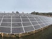Solární elektrárny se prom�nily v ob�í byznys.