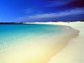 Plaža - Page 6 TOM3308b3_fuerteventura_prf