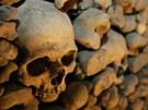 Kostnice u kostela svatého Jakuba v Brně odhaduje podle odborníků ostatky 50 000 lidí.