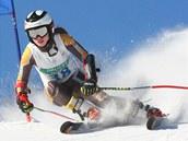 V Říčkách v Orlických horách se jel tradiční závod v alpském lyžování.