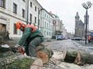 Kácení posledních stromů na Velkém náměstí v Hradci Králové