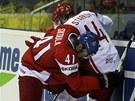 PŘETLAČOVANÁ U MANTINELU. Martin Škoula bojuje o puk s dánským hokejistou Kirillem Starkovem.