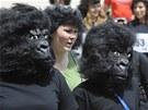 Prahou se prohnala tlupa goril. (28. května 2011)
