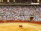 Býčí zápasy ve španělské Valencii. (23. července 2011)