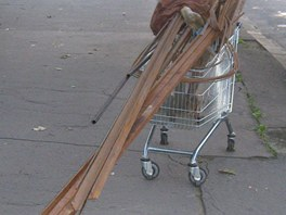 Ostravští šroťáci odvezou na nákupním vozíku takřka vše. Jak vidno, i