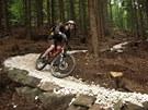 Rychlebsk� stezky jsou stezky pro horsk� kola v okol� �ern� Vody na Jesenicku....