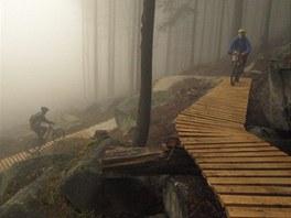 Rychlebské stezky jsou stezky pro horská kola v okolí Černé Vody na Jesenicku....