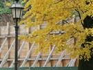 Uzavřené terasy v Žižkových sadech v Hradci Králové