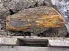 Vrt odhalil v podlo�� d�lnice D1 na Ostravsku nap��klad i kusy d�eva.