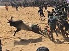 Ochránci zvířat si stěžují, že pořadatelé se snaží zvířata před vstupem do...