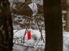 Svíčka za mrtvého chlapečka v místech, kde policie u Radvanic na Trutnovsku...