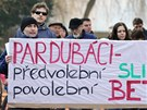 Zhruba třicet lidí se sešlo v Tyršových sadech, aby protestovali proti kácení...