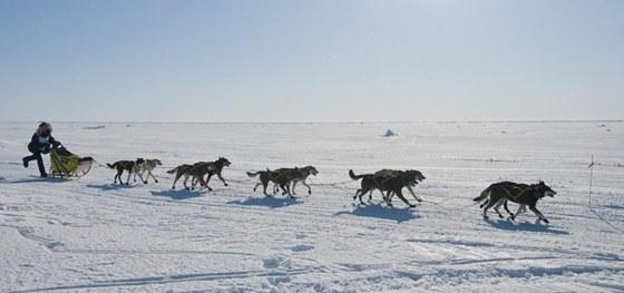 Iditarod: spousta romantiky, ale velmi drsné