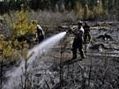 Požár lesa u Vilémova (29. dubna 2012)