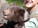 Potomci medvědice Kamčatky z brněnské zoo jsou kluci: mládě na snímku se může
