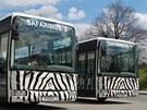 Zájemce o hromadnou cestu skrz safari ve Dvoře Králové nad Labem čeká v letošní...