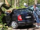 Strom zdemoloval auta na parkovišti v osadě Peklo u Nového Města nad Metují na