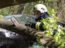 Strom zdemoloval auta na parkovi�ti v osad� Peklo u Nov�ho M�sta nad Metuj� na