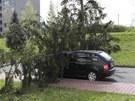 Siln� v�tr shodil strom na policejn� vozidlo zaparkovan� v Moravsk� ulici v