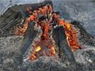 Velký lesní požár, který musí likvidovat hasiči u Přemyslovic na Prostějovsku,
