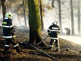 Hasiči likvidovali lesní požár v Odrách-Dobešově na Novojičínsku.