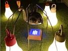 Svítidla v podobě žárovek jsou populární už několik let.