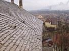 Ch�traj�c� z�mek Bu�t�hrad na Kladensku