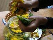 Do sklenice nastrkejte všechny pampeliškové květy (případně další bylinky jako...