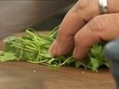 Do salátu z grilovaných rajčátek přidejte ještě čerstvě nasekanou zelenou...
