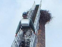 Záchranáři museli za pomoci hasičů sundat vejce z čapího hnízda v Příchovicích.
