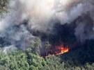 DÝM A PLAMENY. Lesní požár mezi Bzencem, Strážnicí a Ratíškovicemi na...