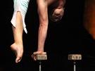 Cirque du Soleil a představení Alegría