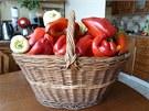 Část loňské úrody paní Merlíčkové se samozavlažovacích nádob. A to papriky