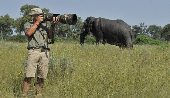 """Nebezpeční sloni. """"Pokud jsou ve sloním stádu mláďata, je lepší se mu vyhnout."""
