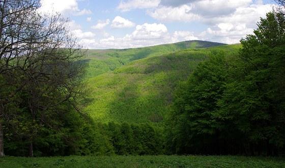 Csóványos (938 m) ze sjezdovky pod Nagy hideg hegy (865 m)