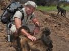 Na procházce s paviány v Naankuse v Namibii