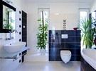 Koupelnu v pat�e osv�tluj� hned dv� okna.
