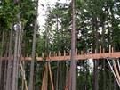 Výstavba stezky korunami stromů na Kramolíně u Lipna nad Vltavou. Dřevěná lávka