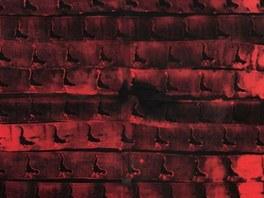 Jakub Špaňhel: Slepice jdou do pekla