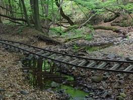 Trosky úzkorozchodné železnice v dolině Fekete-völgy