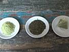 Zleva práškový zelený čaj matcha, sypaný zelený darjeeling a pyramidový sáček s práškovým čajem matcha a čajem typu kabusé