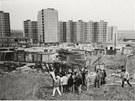 Exkurze architekt� a projektant� na rozestav�n� s�dli�t� Lu�iny, 1983.