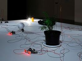 Richard Loskot vytváří prostřednictvím technických, elektronických médií...