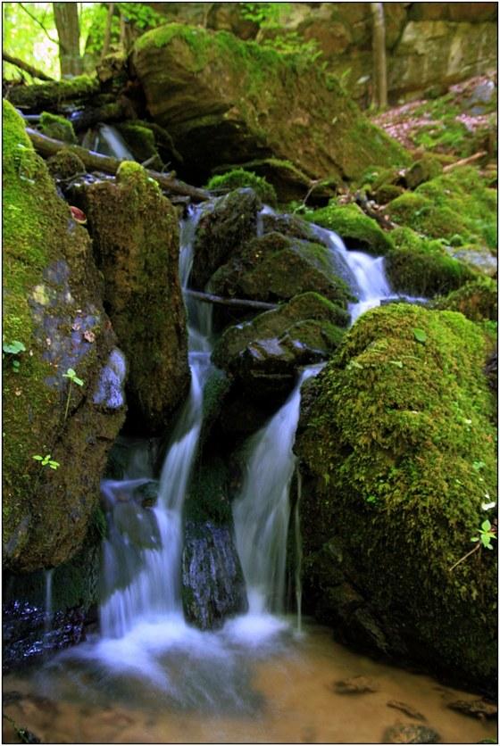 Z okolních svahů přitéká do Kamenice nespočet malých potůčků. Mnohé z nich