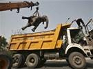 Je�áb odklízí t�lo �ty�icetileté slonice Chanchal, kterou na p�edm�stí Nového...